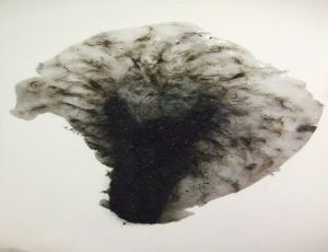 Untitled, 2010, crushed charcoal and hair on plastic glue, 103X89 cm